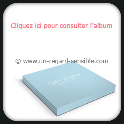 L'album Pin Up